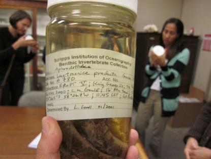 SIO invertebrate jar